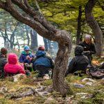 Chile Nativo Wild Camping