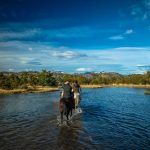 FULL DAY TYNDALL GLACIER HORSEBACK RIDE